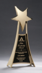 Star Casting Trophy in Gold Tone Finish Artistic Awards